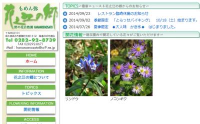 2014-10-26-flower